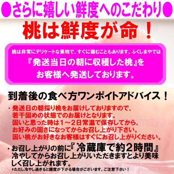 桃 福島県 献上桃の郷 桑折町産 特秀品桃 2.7kg箱 9〜15玉入|fukushimasan|07