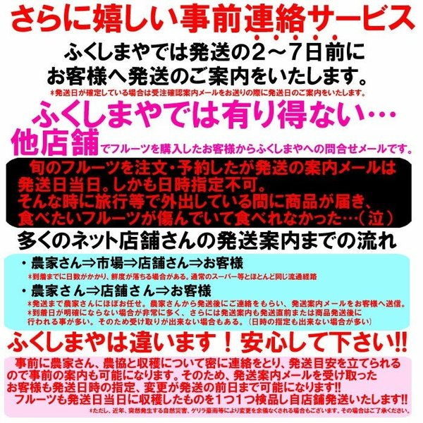 桃 福島県 献上桃の郷 桑折町産 特秀品桃 2.7kg箱 9〜15玉入|fukushimasan|09