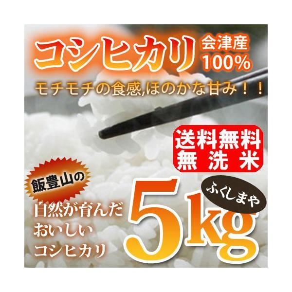 令和元年度産 無洗米 会津産 コシヒカリ 5kg|fukushimasan