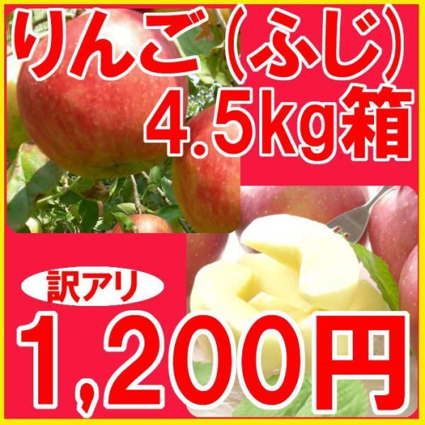 福島県産 訳アリ ふじ リンゴ 4.5kg箱 (10〜25玉入) |fukushimasan