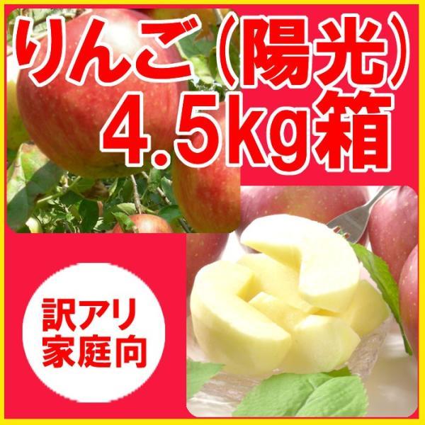 福島県産 訳アリ 陽光 リンゴ 4.5kg箱 (10〜25玉入) 「ふくしまプライド。体感キャンペーン(果物/野菜)」|fukushimasan