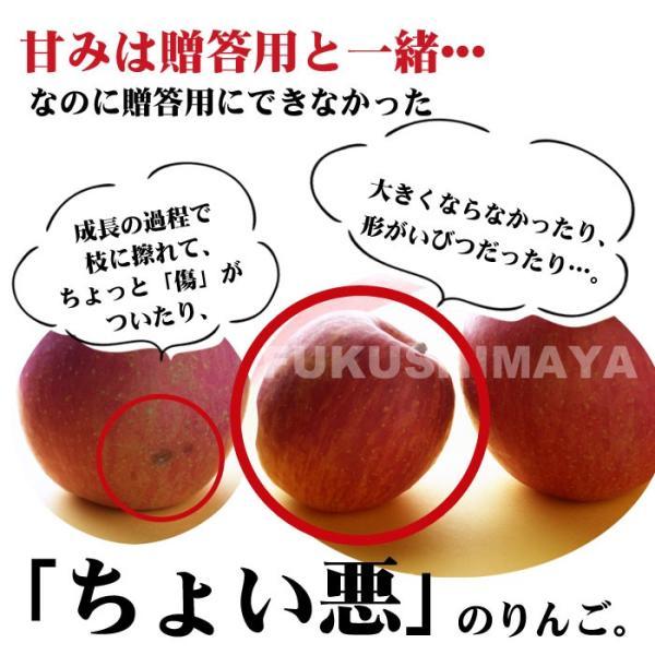 りんご 訳あり 格安 福島県産 訳アリ サンふじ リンゴ 4.5kg箱 (12〜25玉入) 2019年|fukushimasan|11
