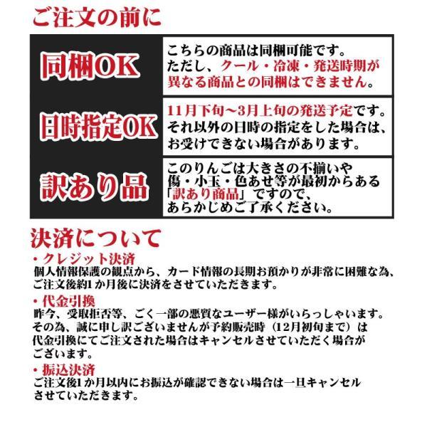 りんご 訳あり 格安 福島県産 訳アリ サンふじ リンゴ 4.5kg箱 (12〜25玉入) 2019年|fukushimasan|12