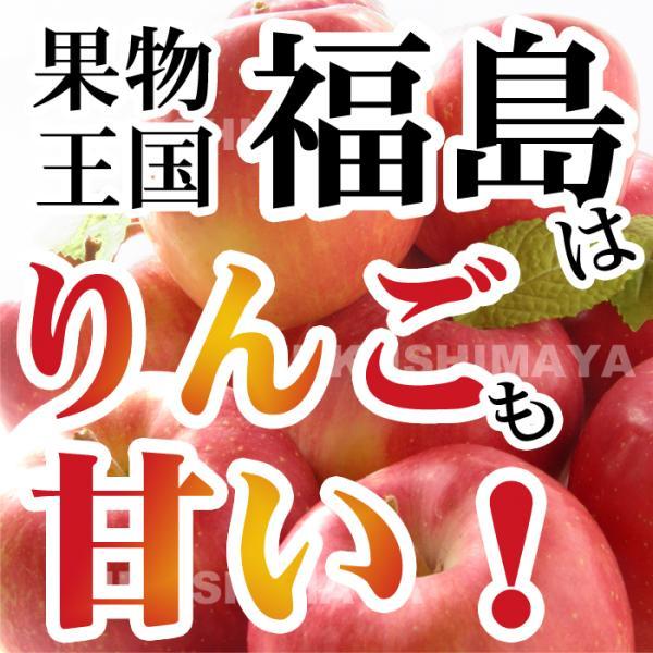 りんご 訳あり 格安 福島県産 訳アリ サンふじ リンゴ 4.5kg箱 (12〜25玉入) 2019年|fukushimasan|04