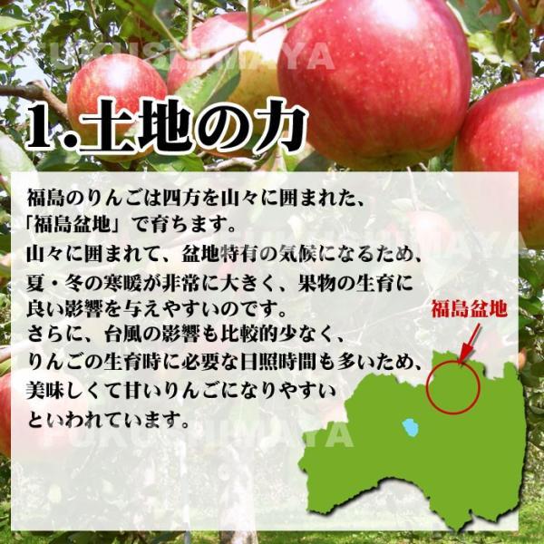 りんご 訳あり 格安 福島県産 訳アリ サンふじ リンゴ 4.5kg箱 (12〜25玉入) 2019年|fukushimasan|06