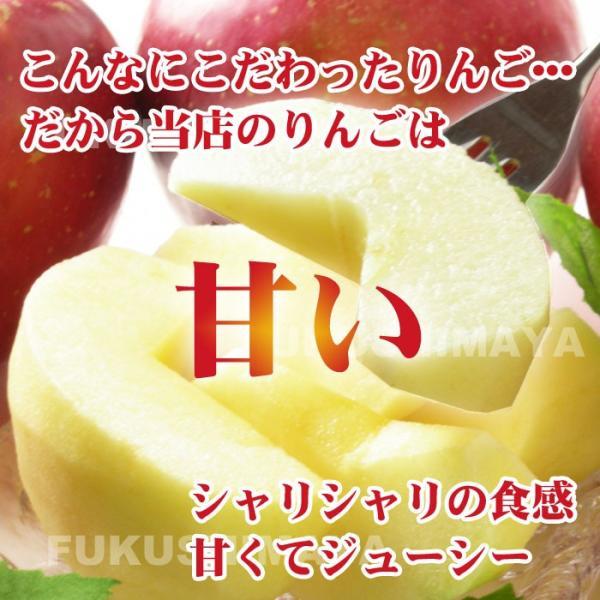 りんご 訳あり 格安 福島県産 訳アリ サンふじ リンゴ 4.5kg箱 (12〜25玉入) 2019年|fukushimasan|08