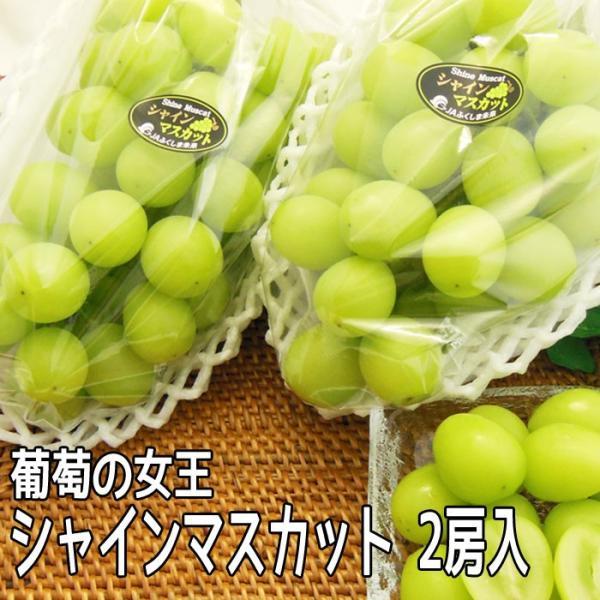 シャインマスカット 2房 約1kg 福島県産 皮ごと食べられる 産地直送 ぶどう 発送時期:9月後半頃-11月中旬頃まで予定