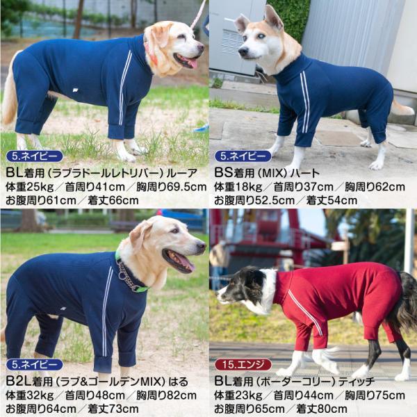 ドッグプレイ(R)体操服ジャージつなぎ(中型犬用)【ネコポス値3】|fullofvigor-yshop|09