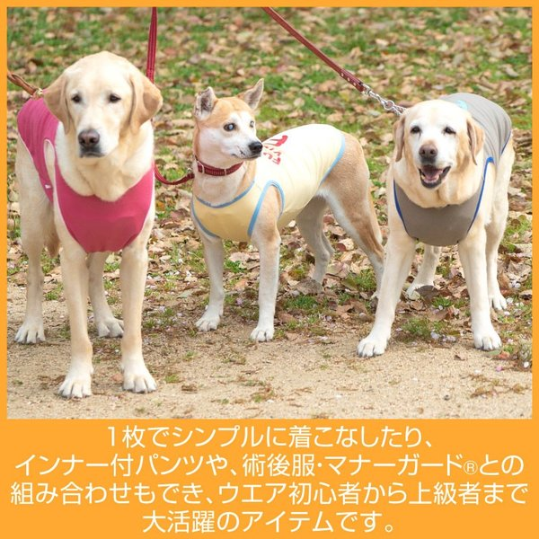 【2019年春夏新作】Fロゴプリントリバーシブルメッシュタンク(大型犬用)【ネコポス値3】 fullofvigor-yshop 09