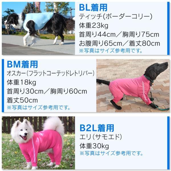【2020春夏新作】反射ロゴ付き防蚊切り替えタンク(大型犬用)【ネコポス値3】|fullofvigor-yshop|13