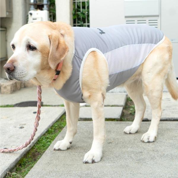 【2020春夏新作】反射ロゴ付き防蚊切り替えタンク(大型犬用)【ネコポス値3】|fullofvigor-yshop|04