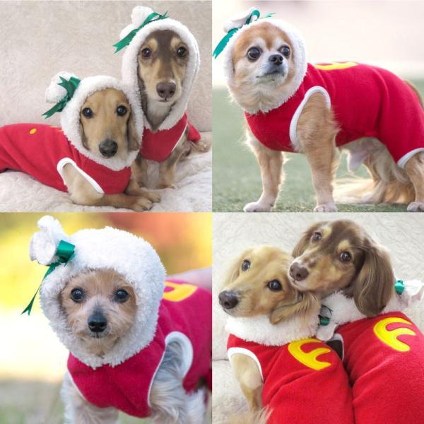 【2020秋冬新作】サンタの袋がフードだワン!つなぎ【ネコポス値3】 fullofvigor-yshop 05