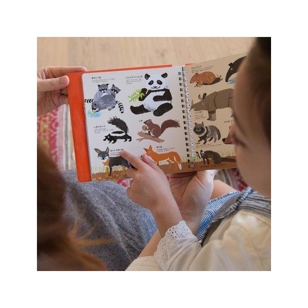 4 はじめてずかん どうぶつ 1+2 (2冊セット) 絵本 子ども 知育 メール便 送料無料|funny-gift|03