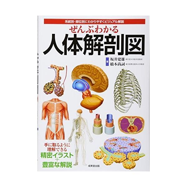 ぜんぶわかる人体解剖図―系統別・部位別にわかりやすくビジュアル解説|furatto