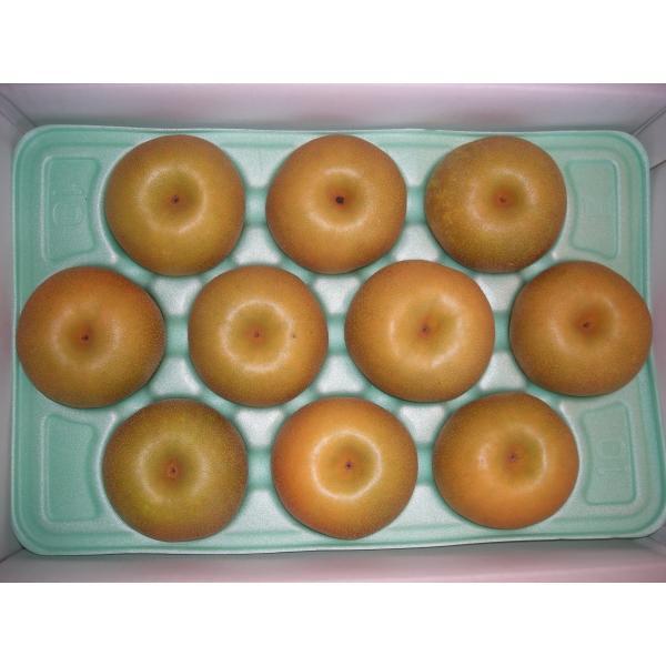 糖度選果の幸水-贈答サイズ5キロ(9個から12個入り)