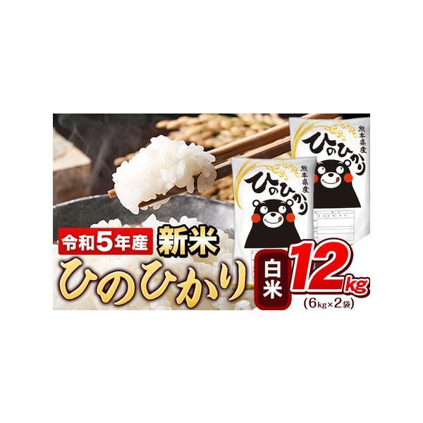 ふるさと納税令和2年産ひのひかり10kg熊本県産白米10kg+国産雑穀米《3-7営業日以内に順次出荷(土日祝除く)》令和2年精米