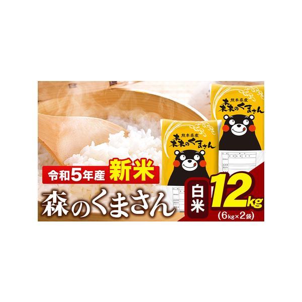 ふるさと納税令和2年産森のくまさん10kg熊本県産白米10kg+国産雑穀米《3-7営業日以内に順次出荷(土日祝除く)》令和2年精