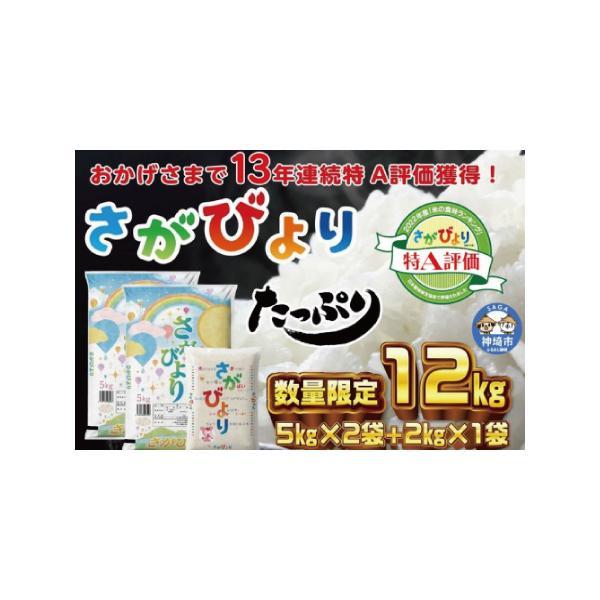 ふるさと納税11年連続最高評価特A受賞米 令和2年産さがびより10kg(H015107)佐賀県神埼市