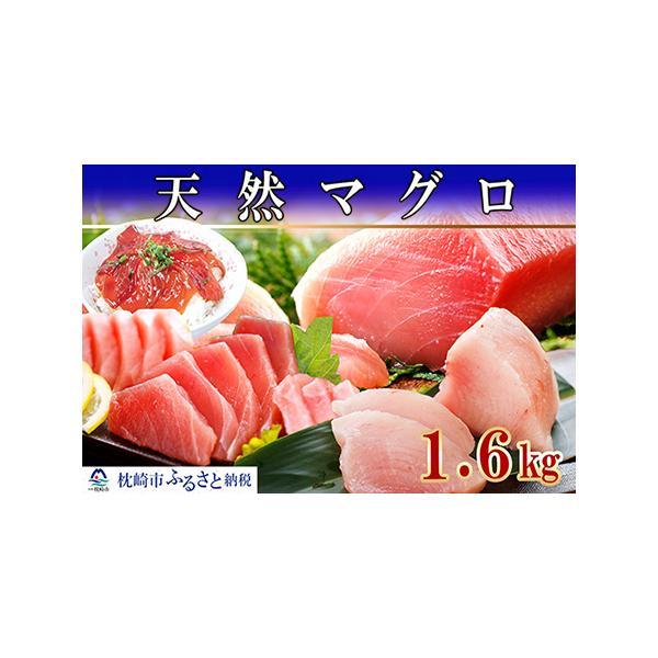 ふるさと納税MM-24天然まぐろ1.6Kg鹿児島県枕崎市