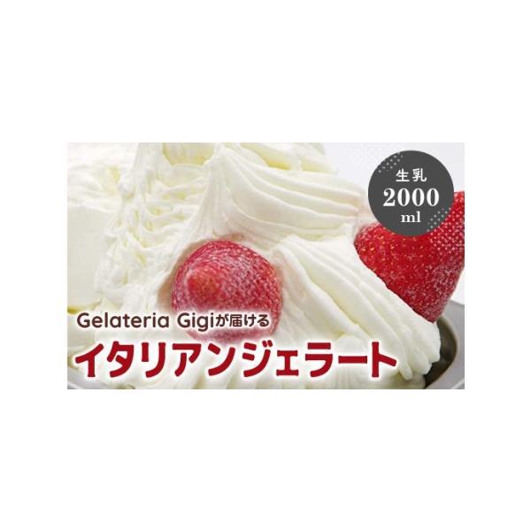 ふるさと納税 業務用サイズ 水本牧場の放牧牛の生乳を使用したGigiの生乳イタリアンジェラート2000ml 43019 北海道恵