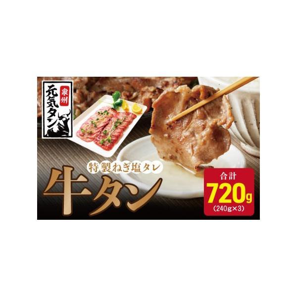 ふるさと納税010B433特製ねぎ塩タレ牛タン焼肉用約1.0kg大阪府泉佐野市