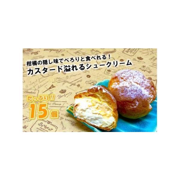ふるさと納税50年変わらない味 地元で人気のシュークリーム15個大分県国東市