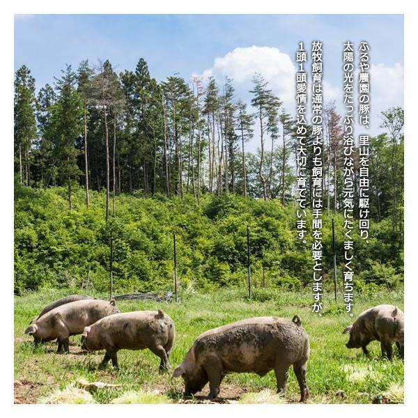 里の放牧豚 Bセット furuyanouen 05