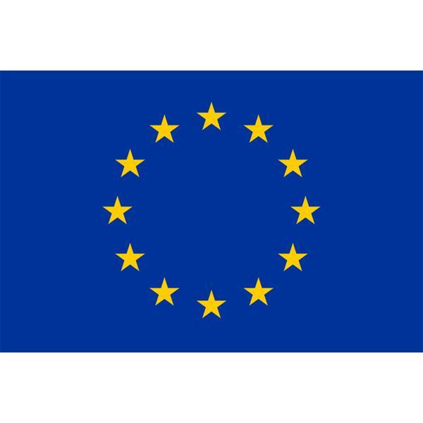 その他の国旗】欧州連合・EU旗(アクリル) サイズ:90×135cm【領収書 ...