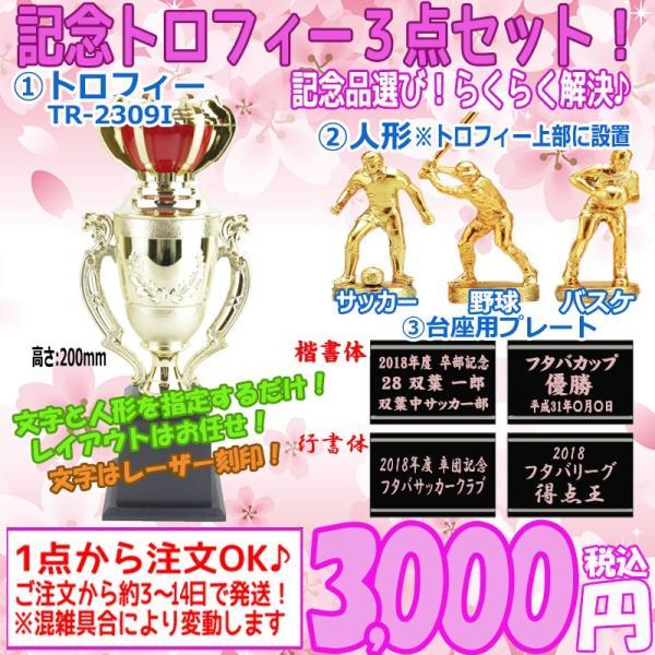 【記念品】卒団 卒業 卒部 表彰 トロフィー 3点セット TR-2309I サッカー バスケットボール 野球 人形 彫刻入りプレート 名入れ ネーム 優勝カップ 参加賞
