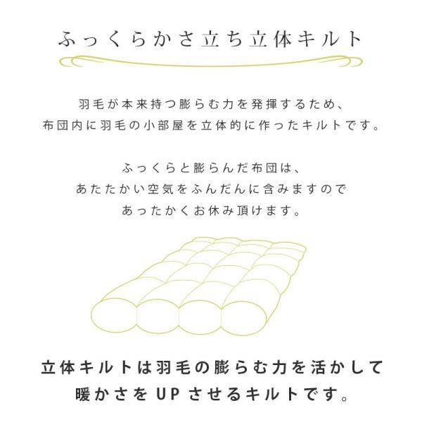 西川 羽毛布団 ダブル ハンガリー産グースダウン90% 1.7kg 日本製 羽毛掛け布団 安眠館セレクション Executive|futon|10