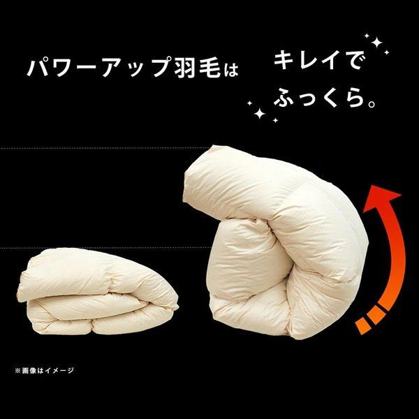 羽毛布団 ダブル ロイヤルゴールド ダウン90% 日本製|futon|12