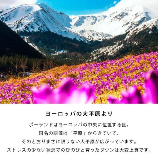 羽毛肌掛け布団 シングル ポーランド産マザーグース95% 日本製 ダウンケット プレミアムゴールドラベル 夏の羽毛布団 futon 04