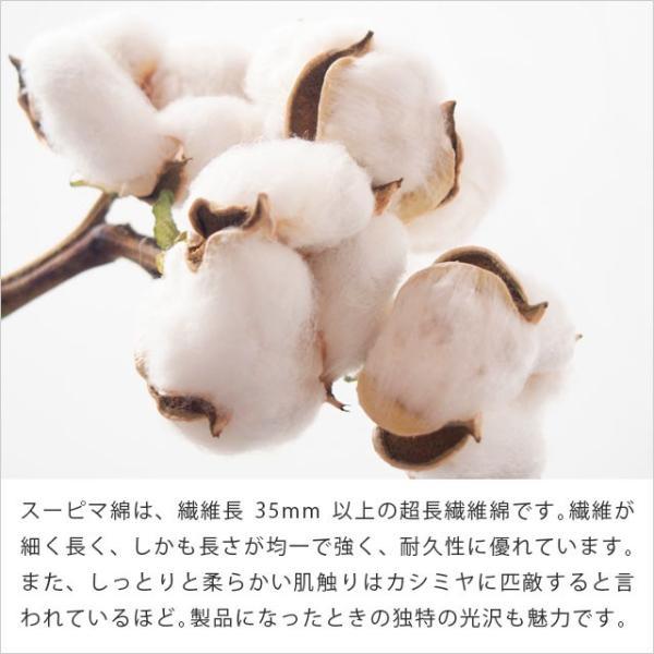 タオルケット 今治 シングル 日本製 朱子織り スーピマコットン タオルケット わた音|futon|06