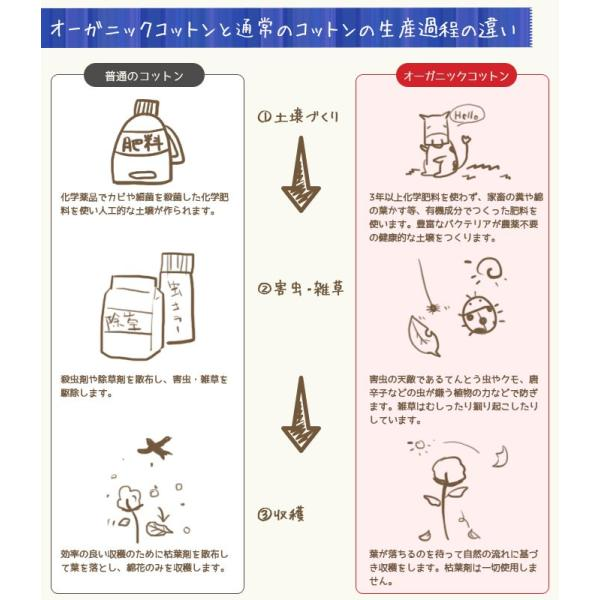 敷きパッド シングル オーガニックコットン 綿100% ニット 抗菌 防臭 汗取り敷パッド 洗えるパットシーツ|futon|05