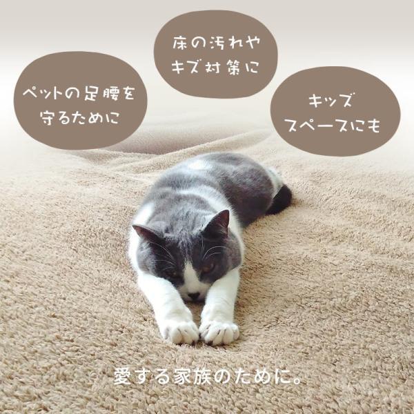 カーペット 6畳 261×352cm 日本製 絨毯 ペット対応 抗菌 フリーカット タマズライフ futon 04