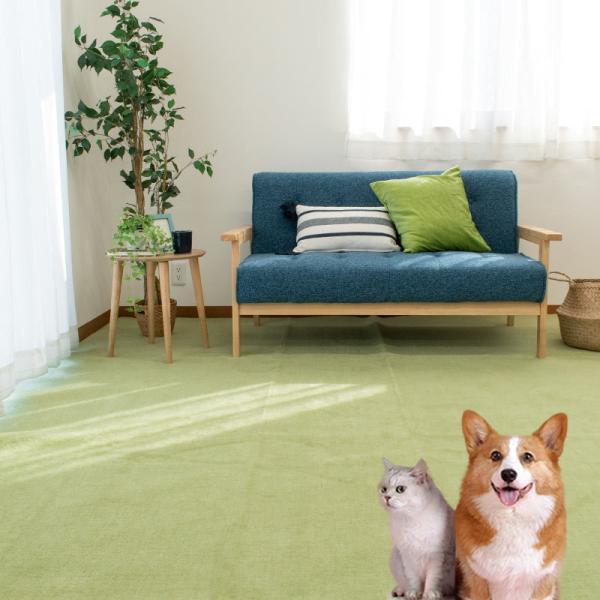 カーペット 6畳 261×352cm 日本製 絨毯 ペット対応 抗菌 フリーカット タマズライフ futon 05