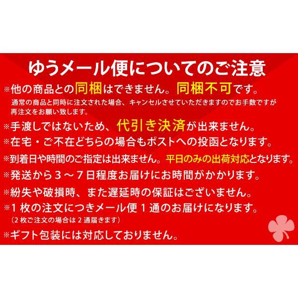 のれん 日本製 洗える暖簾 飛龍 ひりゅう 85×150cm ゆうメール便 futon 08