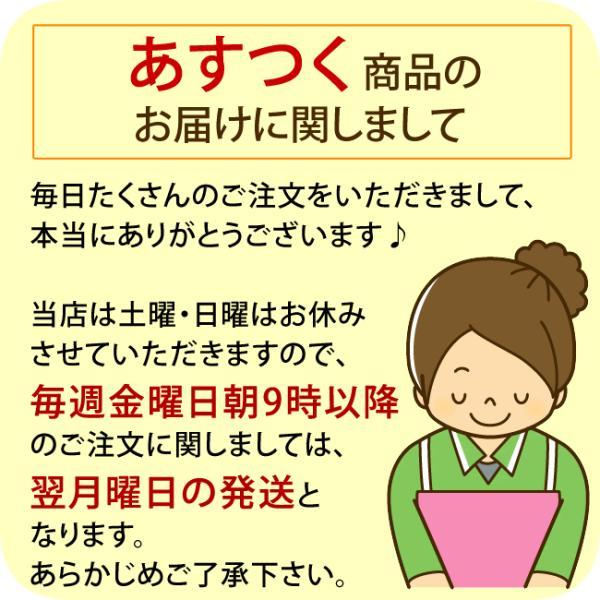 合繊布団セット S マイティトップ2 ほこりの出にくい合繊3点マカロン3 日本製 父の日 ギフト|futontanaka|06