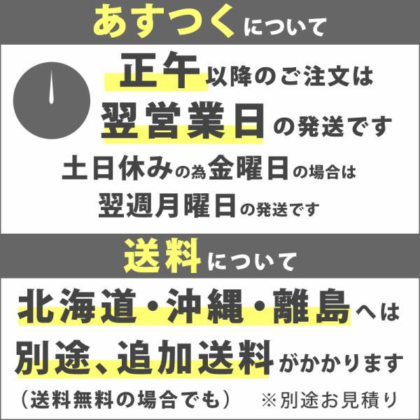 今だけまくらプレゼント 東京西川 エアー AiR 01 マットレス シングル ベーシックタイプ 正規品 敷布団|futontanaka|13