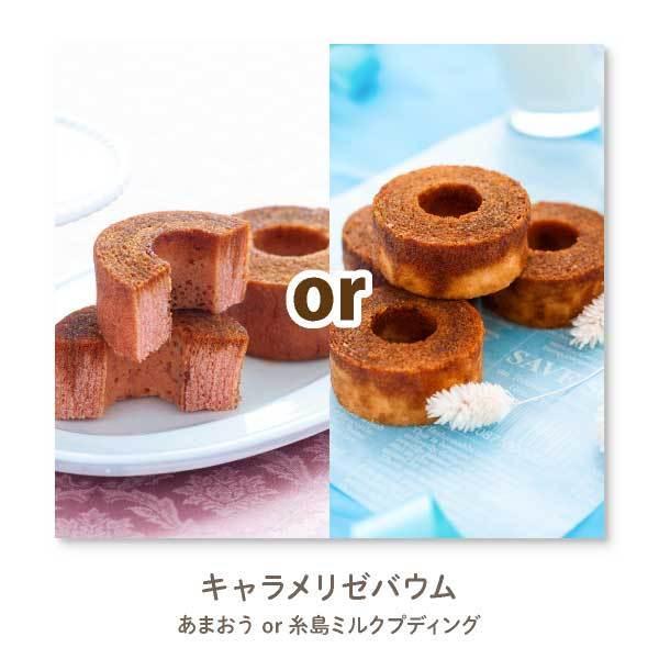 【メール便 送料無料】 NEW 博多風美庵お試しセット 秋バージョン mailbin|fuubian|03