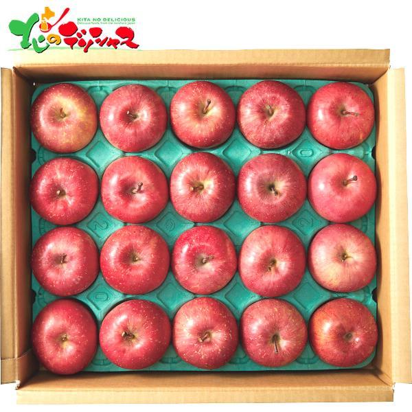 青森県産 サンふじりんご(5kg) 2021 冬ギフト お歳暮 お年賀 寒中見舞い ギフト 贈り物 お礼 お返し 果物 フルーツ リンゴ 林檎 旬 季節 送料無料 お取り寄せ