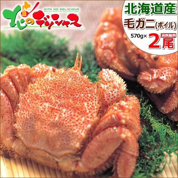 カニ 北海道産 毛ガニ 2尾 570g×2 (姿/ボイル冷凍) 毛がに 毛蟹 かにみそ ギフト 贈り物 訳あり じゃありません 北海道 グルメ 送料無料 お取り寄せ