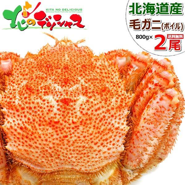 カニ 北海道産 毛ガニ 2尾 800g×2 (姿/ボイル冷凍) 毛がに 毛蟹 かにみそ ギフト 贈り物 訳あり じゃありません 北海道 グルメ 送料無料 お取り寄せ