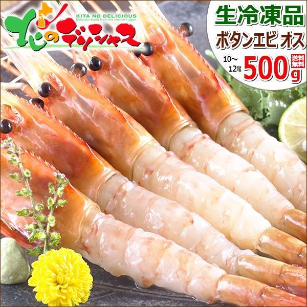 ロシア産 特大 ボタンエビ 500g (BL/オス/10-12尾入り/生冷凍) エビ 海老 ギフト 贈り物 贈答 訳あり じゃありません 北海道 食品 グルメ 送料無料 お取り寄せ