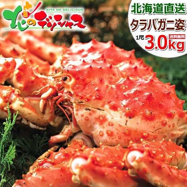 カニ タラバガニ 特大 1尾 3.0kg (姿/ボイル冷凍) 蟹 タラバ タラバ蟹 たらば姿 タラバ姿 ギフト 訳あり じゃない 北海道 グルメ 送料無料 お取り寄せ