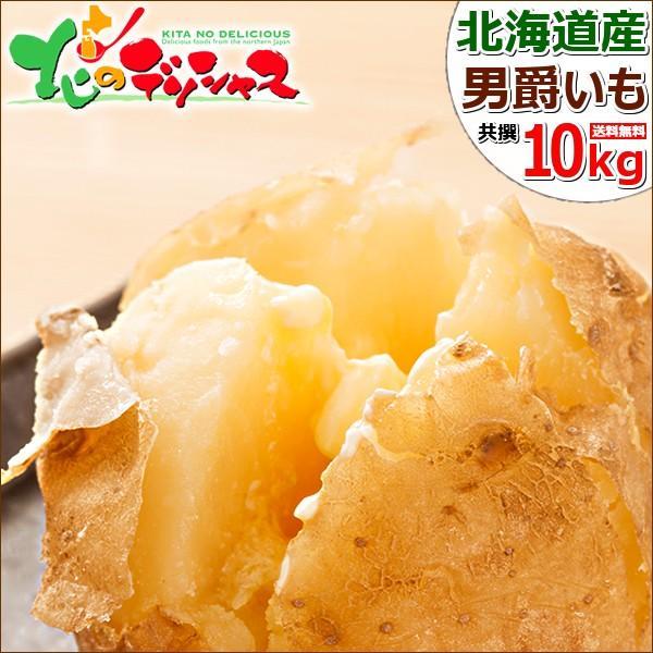【予約】北海道産 新じゃが じゃがいも 男爵いも 10kg 男爵薯 ジャガイモ 馬鈴薯 越冬 野菜 自宅用 家庭用 人気 北海道 食品 グルメ 送料無料 お取り寄せ