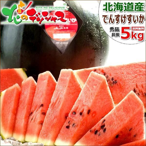 【予約】お中元 北海道産 でんすけすいか 1玉 5kg (JA共撰/秀品/クール便) 真っ黒 スイカ ギフト 贈り物 暑中御見舞 残暑御見舞 送料無料 お取り寄せ