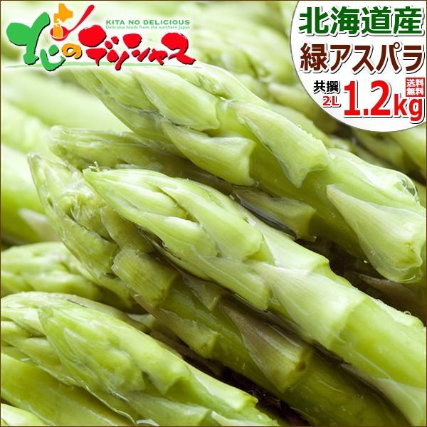【出荷中】北海道産 グリーンアスパラ 1.2kg (JA共撰/ハウス栽培/L-2Lサイズ) アスパラ アスパラガス グリーンアスパラガス ギフト 野菜 送料無料 お取り寄せ