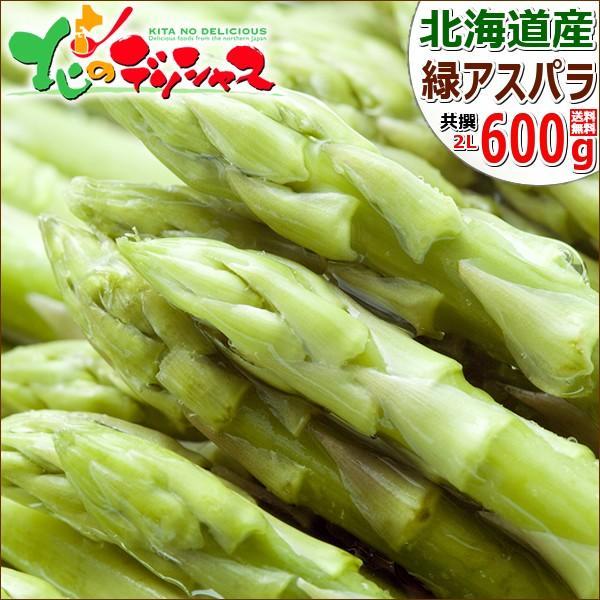 【予約】北海道産 グリーンアスパラ 600g (JA共撰/ハウス栽培/L-2Lサイズ) アスパラ アスパラガス 残暑見舞い 敬老の日 ギフト 野菜 送料無料 お取り寄せ