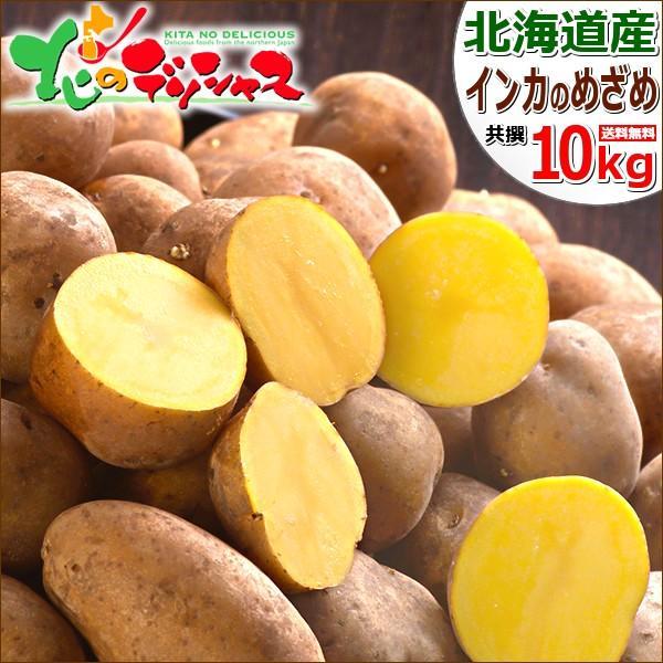 【出荷中】北海道産 新じゃが じゃがいも インカのめざめ 10kg ジャガイモ 馬鈴薯 越冬 野菜 自宅用 家庭用 人気 北海道 食品 グルメ 送料無料 お取り寄せ